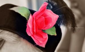 think_pink_rose