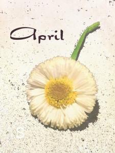 blume_april