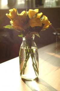 sunny_flowers