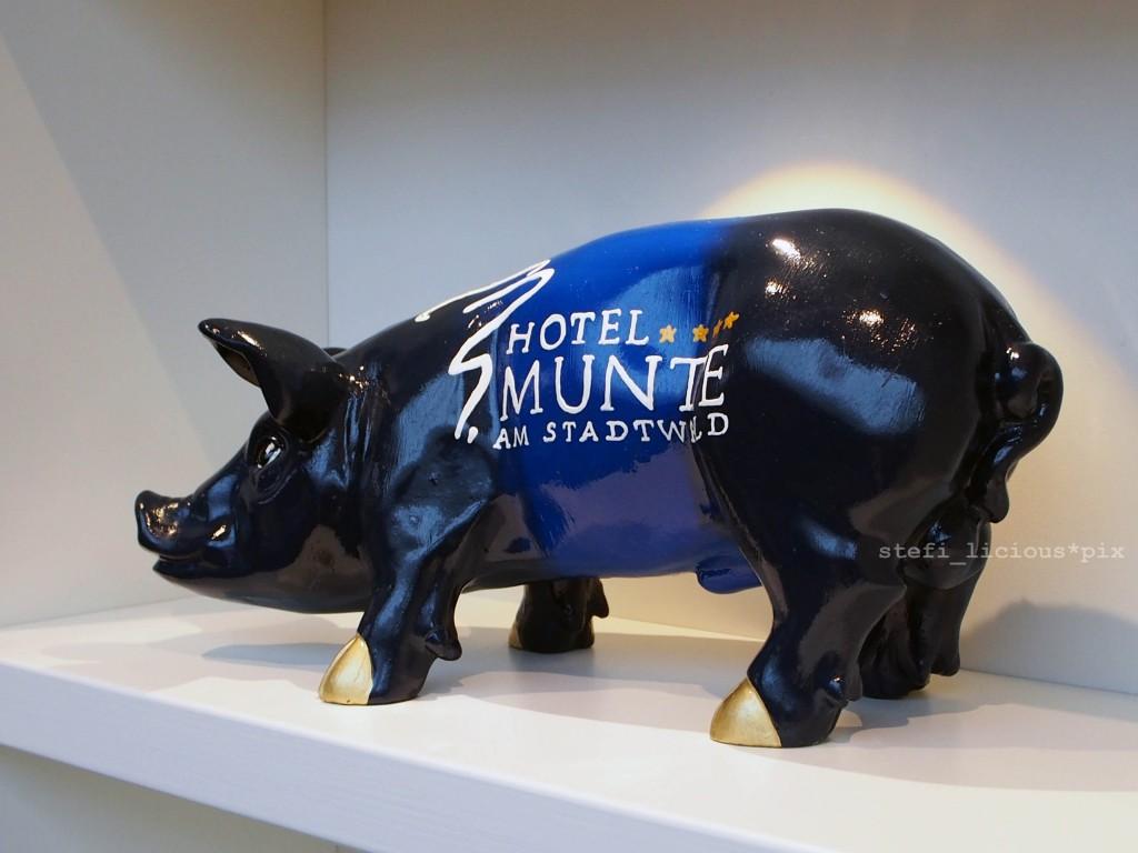 hotel_munte